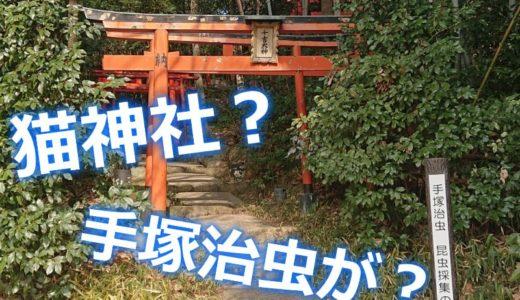 宝塚の千吉稲荷神社(猫神社)は手塚治虫ゆかりの地!写真つきで参拝レポ