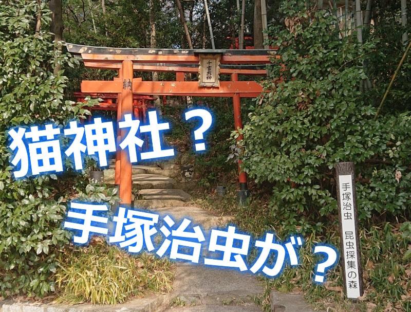 千吉稲荷神社