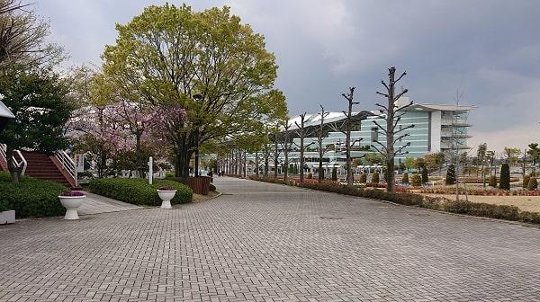 阪神競馬場の園内
