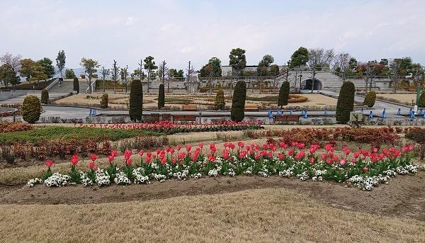 阪神競馬場の花