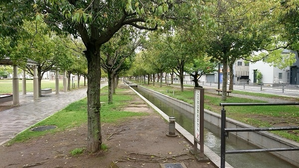 末広中央公園のベンチ