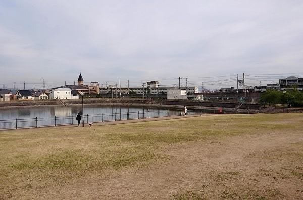 新池公園の芝生