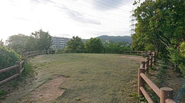 上の池公園の芝生