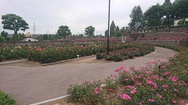 宝塚市周辺のバラ公園