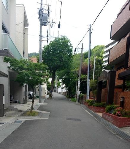 甲子園大学への坂道