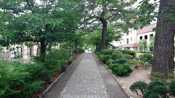 花の道セルカ