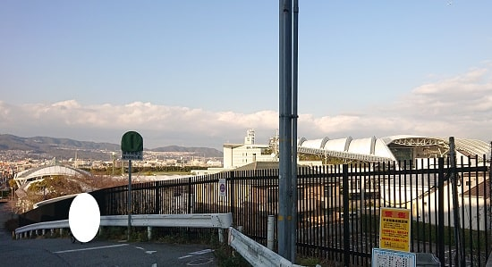 阪神競馬場の全体